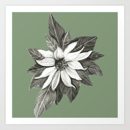 Florida Flower with Green Background Art Print