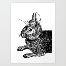 The Rabbit and Roses   Black and White Art Print