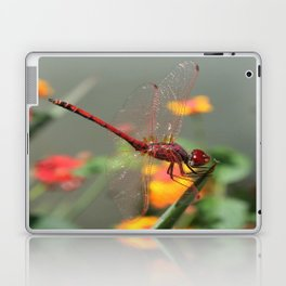 Red Skimmer or Firecracker Dragonfly With Lantana Background Laptop & iPad Skin