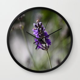 lavendar Wall Clock