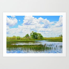 Everglades Reflections Art Print