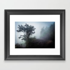 Foggy Pacaya Framed Art Print