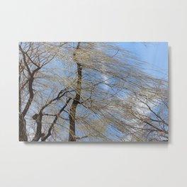 Blowing in the Wind Metal Print