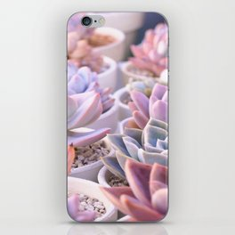 PASTEL SUCCULENTS iPhone Skin