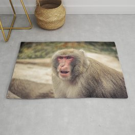 Japanese Snow Monkey Watching Lincoln Park Zoo Rug