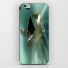 Majestic Flight of the Stingray iPhone Skin