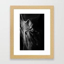 Matador. Framed Art Print