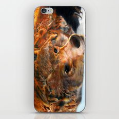 Lazy Bear iPhone & iPod Skin