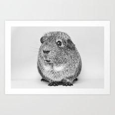 Hi!  Guinea Pig Cute Funny Animals Black and White Art Print