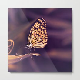 Butterfly in monochrome Metal Print