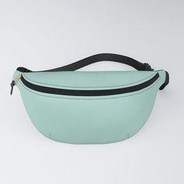 Pastel Aquamarine Blue Green Solid Color Parable to Simple Seafoam 5008-7C by Valspar Fanny Pack