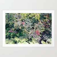 plants Art Prints featuring Plants by krstnhrmnsn