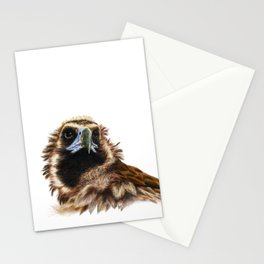 Black Vulture Stationery Cards