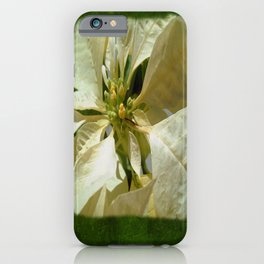 Pale Yellow Poinsettia 1 Blank P1F0 iPhone Case