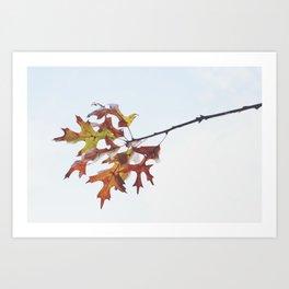Bundle of Leaves Art Print