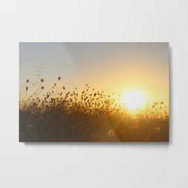 Sunset in Australia Metal Print