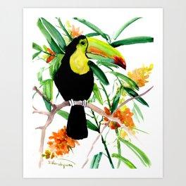 Toucan, Tropical Art, tropics Art Print