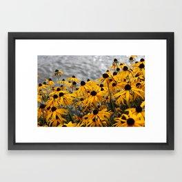 Rifle Lake Framed Art Print