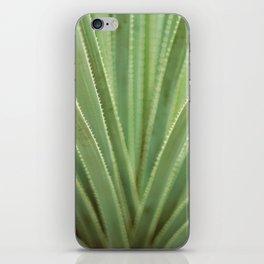 Agave no. 1 iPhone Skin