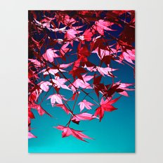red tree II Canvas Print
