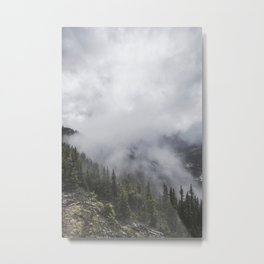 Forest in the Fog | Colour Landscape Metal Print