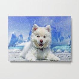 Winter Snowdog Metal Print