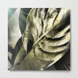 sunlight on golden silver tropical leaves Metal Print