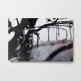 Concept frozen : Ice on branches Metal Print