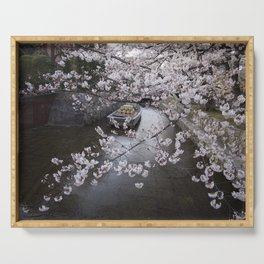 cherry blossoms in Japan Serving Tray