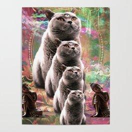Cute Funny Buddha Cat Poster