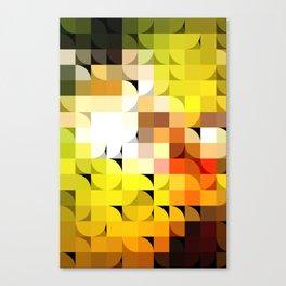 Tessal8td Canvas Print