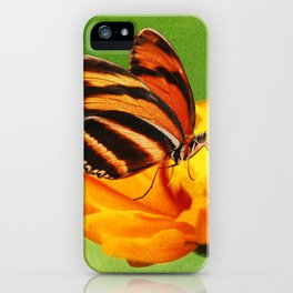 Papillon iPhone Case