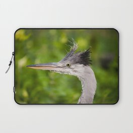 Young orphaned Ardea cinerea the grey heron Laptop Sleeve