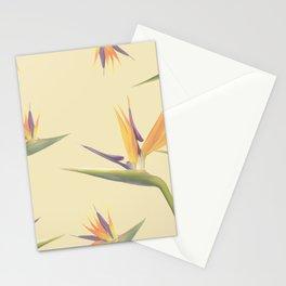 Strelitzia Stationery Cards