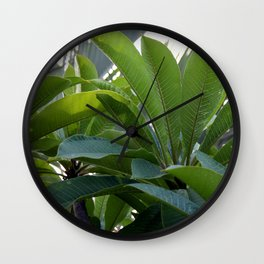 Frangi Leaves Wall Clock