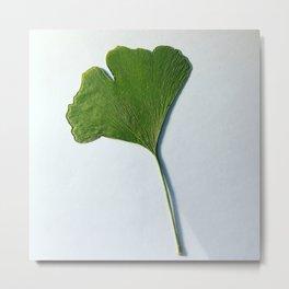 Pressed Leaf Metal Print