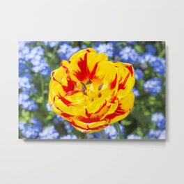 Floral Patterns. Metal Print