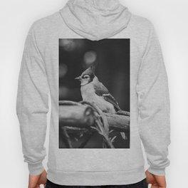 The Bird (Black and White) Hoody
