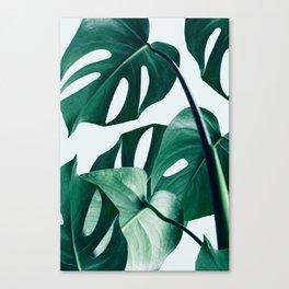 Monstera #society6 #artprints #buyart Canvas Print