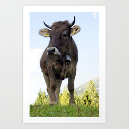 Cow on the pasture Art Print