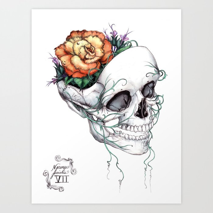 Skull with Flowers Growing out of Head Art Print by katpowell
