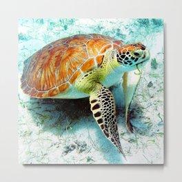 Watercolor Green Turtle Metal Print