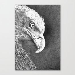 Vigilance Canvas Print