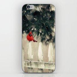 Snowy Day Cardinal iPhone Skin