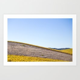 Santa Ynez Valley Art Print