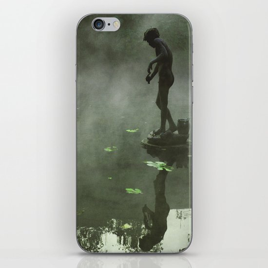 Island iPhone & iPod Skin