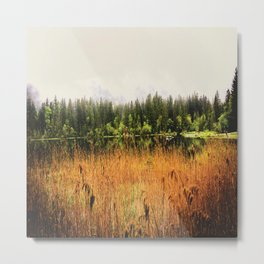 autumn field Metal Print