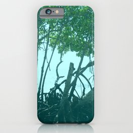 Mangrove Trees in Belize  iPhone Case