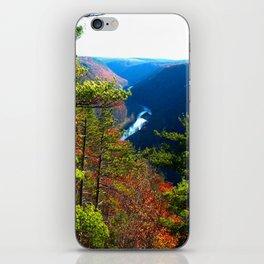Pennsylvania Grand Canyon iPhone Skin