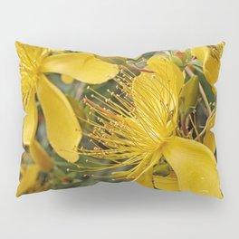 Beautiful St Johns Wort Pillow Sham